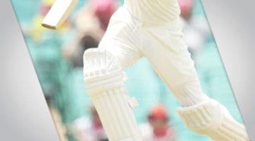 cricket players legs