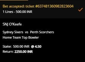 Sydney Sixers v Perth Scorchers betting slip at 10CRIC for the BBL final